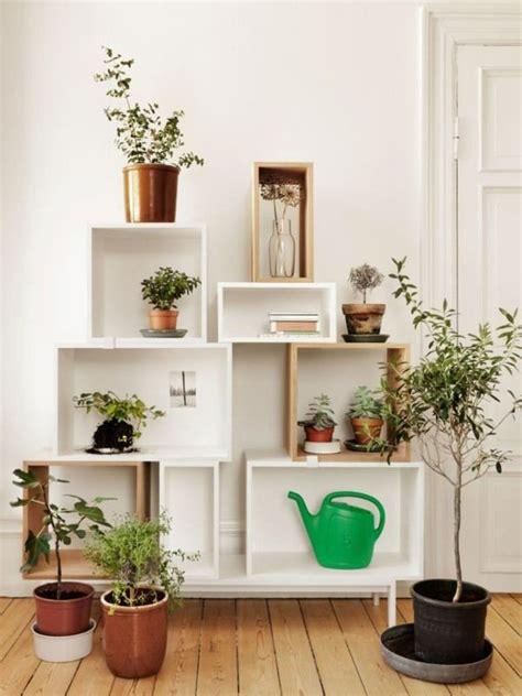 pflanzen für wohnung wohnzimmer wand regal pflanzen design ideen wohnung in