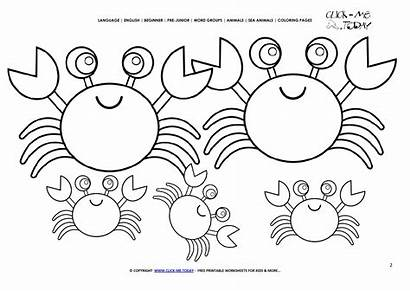 Crabs Coloring Today Pages