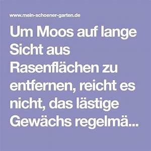 Moos Aus Fugen Entfernen : die besten 25 moos ideen auf pinterest waldkindergarten ~ Lizthompson.info Haus und Dekorationen