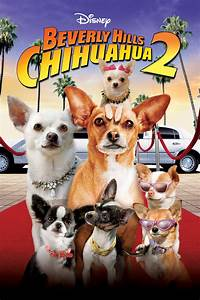 iTunes - Films - Beverly Hills Chihuahua 2