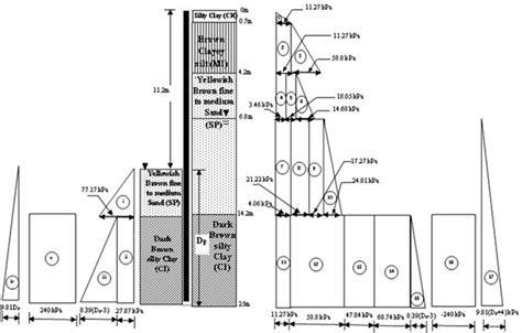 Soil Horizon Diagram Of Rainforest
