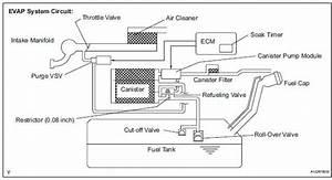 Toyota Rav4 Evap Canister Location