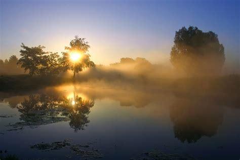nebel   forum fuer naturfotografen