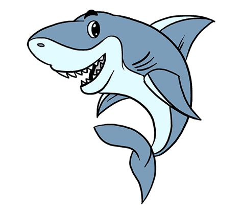 draw  cartoon shark easy step  step drawing guides