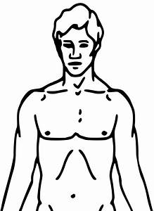 File Pioneer Plaque Man Upper Body As Diagram Template Svg