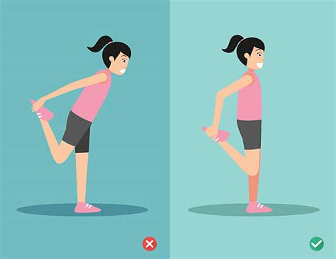 royalty  daily stretching routine clip art vector