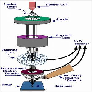 Scanning Electron Microscope Schematic Diagram