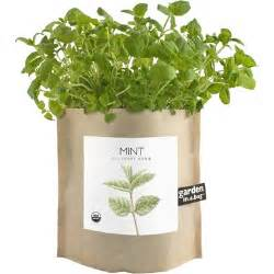 shed in a bag buy potting shed creations mint garden in a bag at well ca