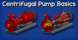 Centrifugal Pump Basics