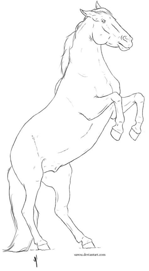 horse head front view drawing google search patterns horses mintak lovak pinterest