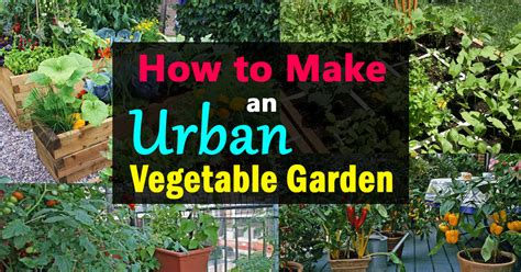 how to make garden how to make an urban vegetable garden city vegetable garden