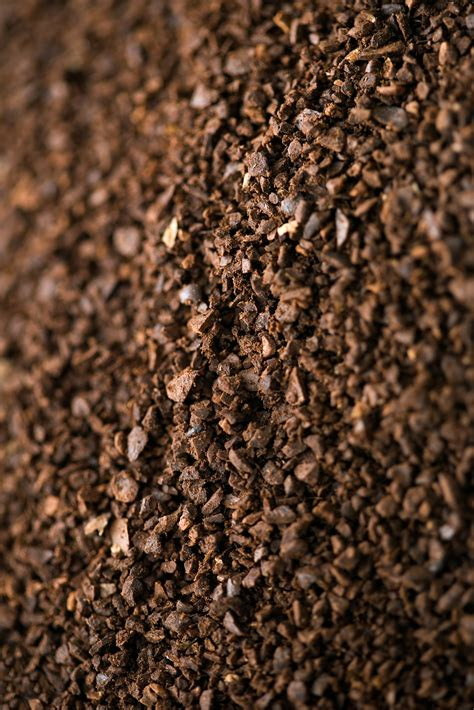 Last updated on 14 february, 2021 15:55 by highreviews. Fertilizing Plants With Coffee Grounds and Eggshells | Home Guides | SF Gate