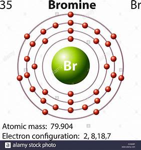 Symbol And Electron Diagram For Bromine Illustration Stock Vector Art  U0026 Illustration  Vector