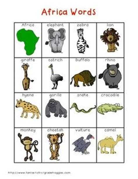 african animal words  images writing center