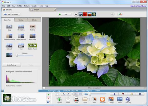 picasa   latest  windows