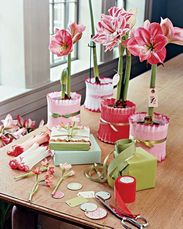 wrapping ideas   avenue