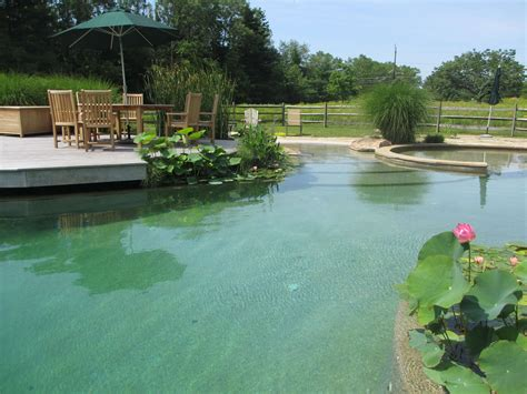 Natural Swimming Pools & Construction