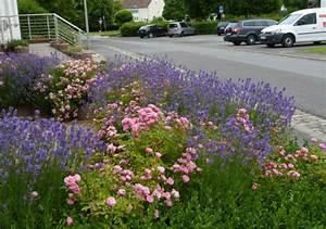 Rosen Und Lavendel : kalenderblatt ~ Yasmunasinghe.com Haus und Dekorationen