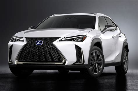 Eight Cool Facts About The 2019 Lexus Ux  Motor Trend
