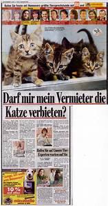 Darf Vermieter Hundehaltung Verbieten : rechtsanw ltin ines maria pfeiffer ~ Lizthompson.info Haus und Dekorationen
