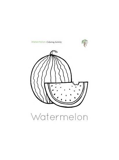 Coloring Watermelon Activities Activity