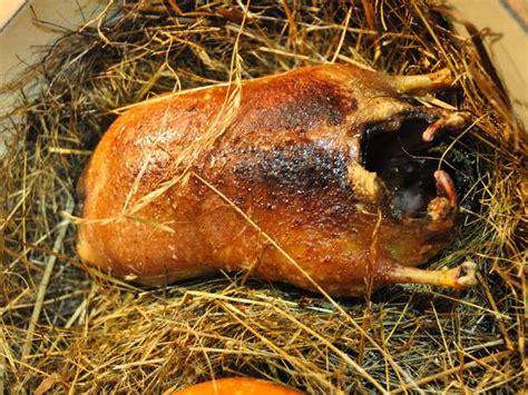 cuisiner canard sauvage recettes de sauvage et canard