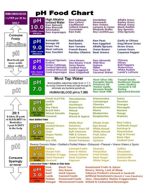 body  alkaline vegetables health  charts
