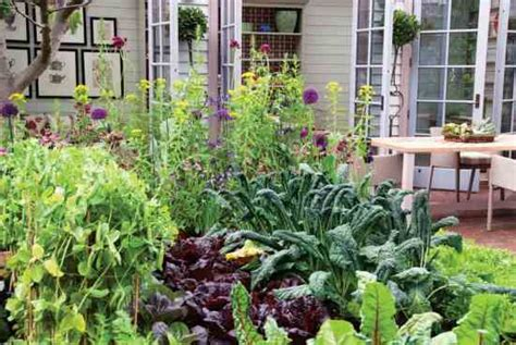 Kitchen In Your Garden by Easy Kitchen Garden Step By Step Organic Gardening