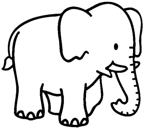 elephant coloring pages  cool funny