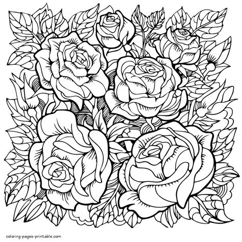 Rose Flower Coloring Pages For Grown up COLORING PAGES