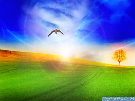 bing my pics pleasant nature high quality wallpapers 2