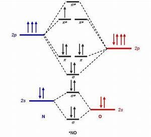 Molecular Orbital Diagram For No