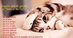 Poemas cortos para niños en postales con gatitos que le encantarán
