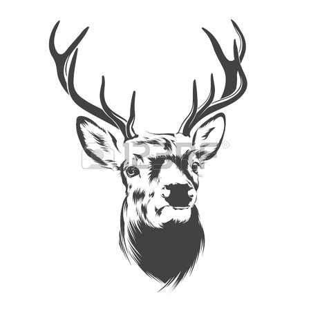 risultati immagini  cervo disegno stilizzato cervo