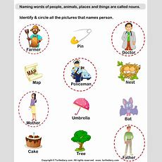 Naming Person Nouns Worksheet  Turtle Diary