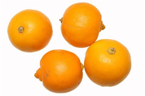 de cuisine ramadan bergamote fruits