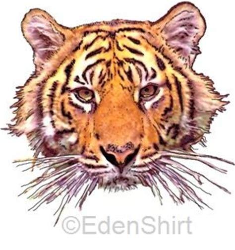 motive tiger edenshirt bedeutung of the tiger