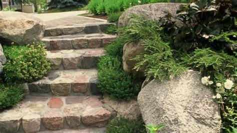 Thymian Im Garten  Die Schmackhafte Schönheit, Die Sie