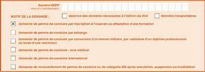Déclaration De Perte Du Permis De Conduire : qu 39 est ce que le cerfa 06 ~ Medecine-chirurgie-esthetiques.com Avis de Voitures