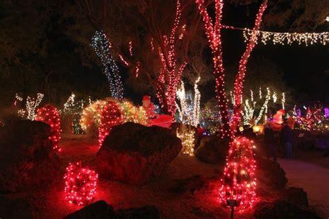 lights in the cactus garden of ethel m candies