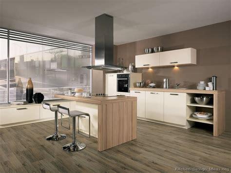 pictures  kitchens style modern kitchen design