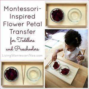 Montessori-Inspired After Mother's Day Flower Petal ...