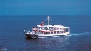 Okinawa Glass Bottom Boat Tour - Klook