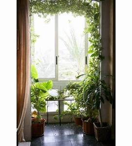 15 gorgeous phyto design ideas and indoor plants for for Interior decor with plants