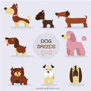 nice dog breed collection