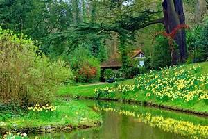 Flower: Spring Garden Grass Serenity Peaceful Stream Creek ...