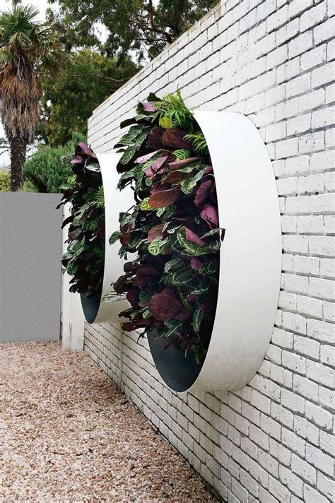 Vertical Garden Designs by Best 25 Vertical Gardens Ideas On