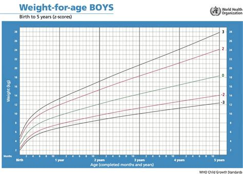 Weight Chart Ana Ecosia