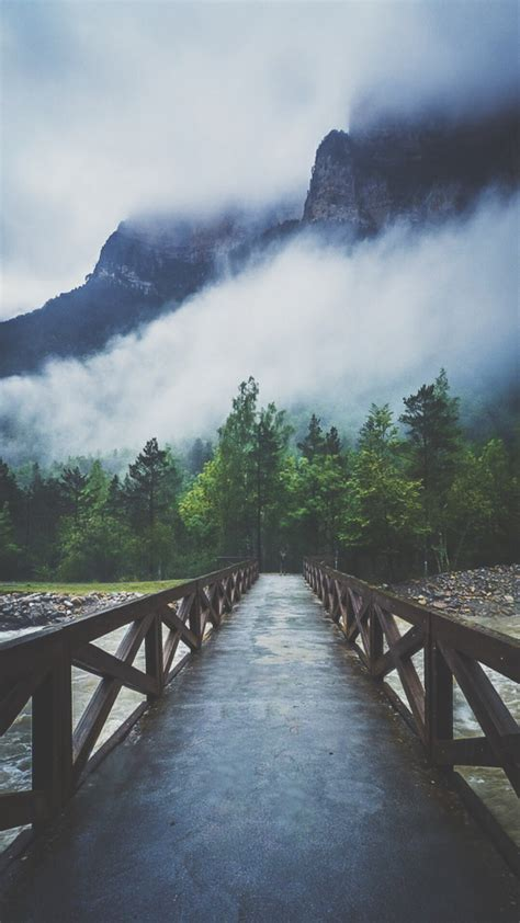river crossing forest bridge mist android wallpaper