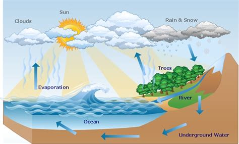hydrosphere assignment  atmospheric perspiration